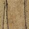 Corkoleum FIG 3mm x 1,4m x 5,5m - pavimento in sughero rotoli - Prezzo per 7,7m2 (rotolo)